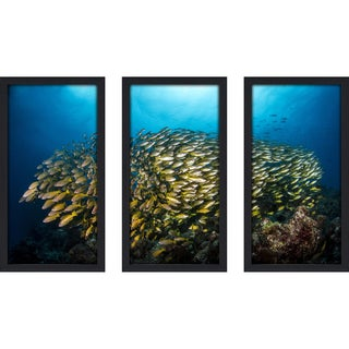 Craig Dietrich 'Yellow Burst' Underwater Photography Framed Plexiglass Set of 3