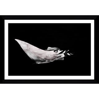 Craig Dietrich 'Black And White Power' Framed Plexiglass Underwater Photography