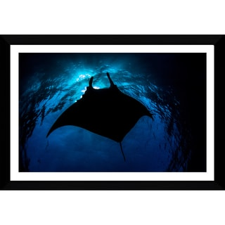 Craig Dietrich 'BlackManta' Framed Plexiglass Underwater Photography