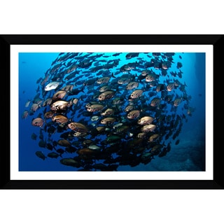 Craig Dietrich 'Bronze Ball' Framed Plexiglass Underwater Photography