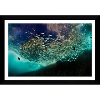Craig Dietrich 'Cool School' Framed Plexiglass Underwater Photography