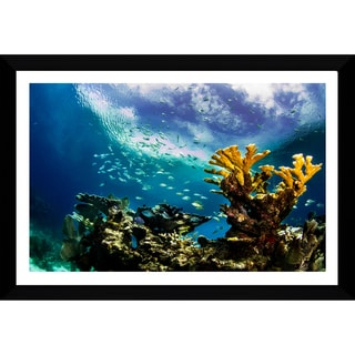 Craig Dietrich 'KeysReef' Framed Plexiglass Underwater Photography