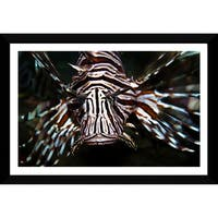 Craig Dietrich 'Lionfish' Framed Plexiglass Underwater Photography