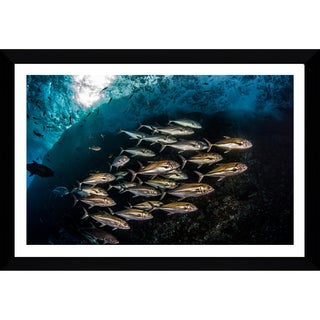 Craig Dietrich 'Silver & Gold' Framed Plexiglass Underwater Photography
