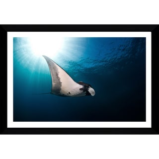 Craig Dietrich 'Sun Burst Manta' Framed Plexiglass Underwater Photography