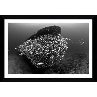 Craig Dietrich 'Tornado 2' Framed Plexiglass Underwater Photography