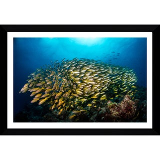 Craig Dietrich 'Yellow Burst' Framed Plexiglass Underwater Photography
