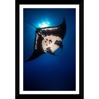 Craig Dietrich 'Vertical Manta' Framed Plexiglass Underwater Photography