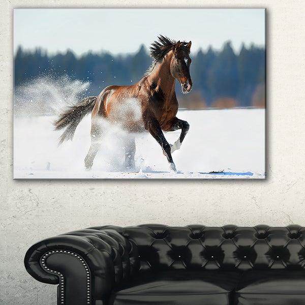 Horse Running in Winter - Landscape Photo Canvas Print - Brown