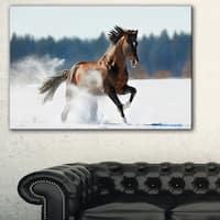 Horse Running in Winter - Landscape Photo Canvas Print