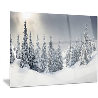 Designart 'Winter Landscape' Photo Metal Wall Art