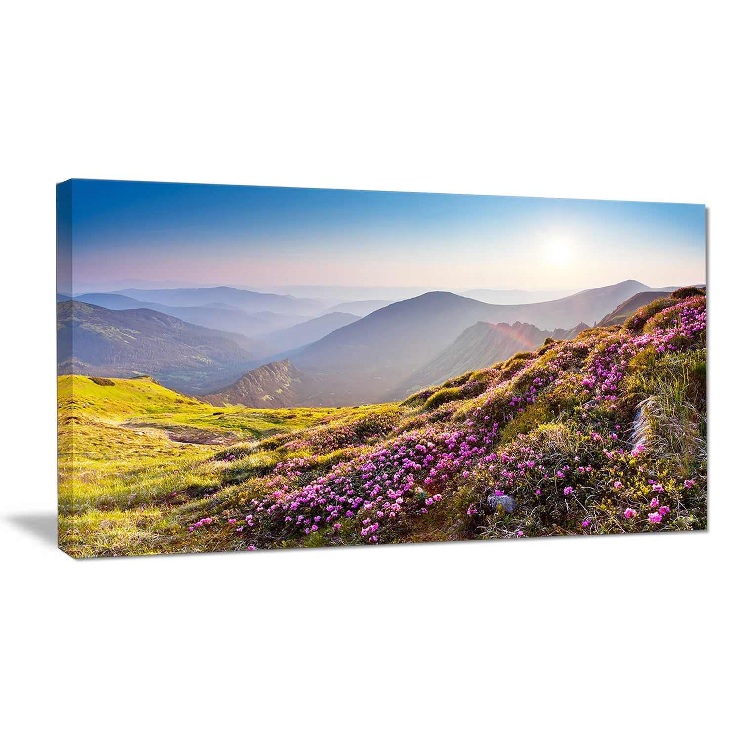 Magic Pink Flowers On Mountains Landscape Photo Canvas Print Green Overstock 12101820