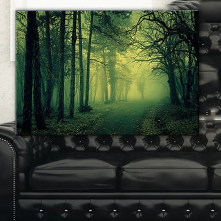 Green Light in Thick Mist Forest - Landscape Photography Wall Art
