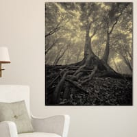 Tree with Big Roots on Halloween - Landscape Photography Wall Art - Black