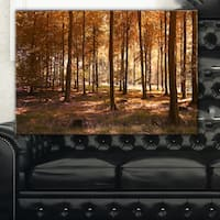 Thick Fall Forest with Orange Leaves - Landscape Photography Wall Art