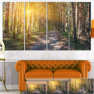 Thick Forest with Yellow Sun Rays - Landscape Photo Canvas Print