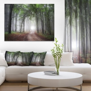 Light Through Green Fall Forest - Landscape Photography Wall Art