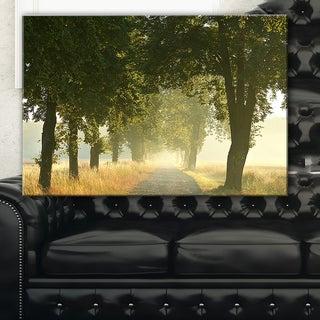 Rural Road Under Big Green Trees - Landscape Photo Canvas Print