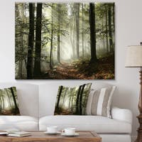 Designart 'Light in Dense Fall Forest with Fog' Landscape Canvas Art Print