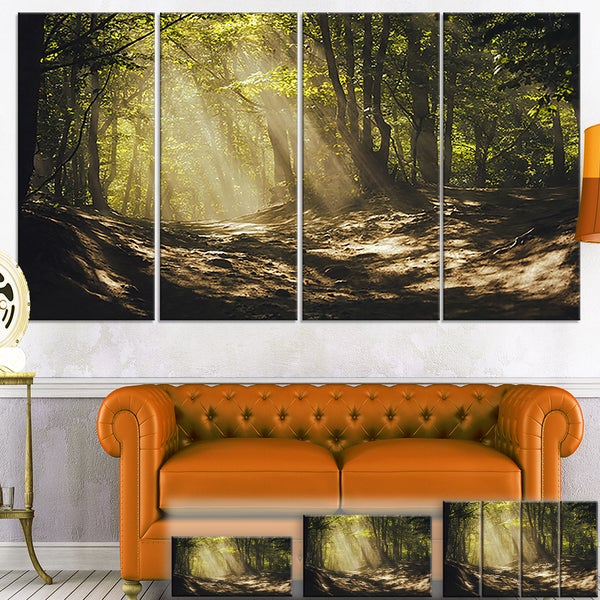 Sun Rays Through Green Trees - Landscape Photo Canvas Print
