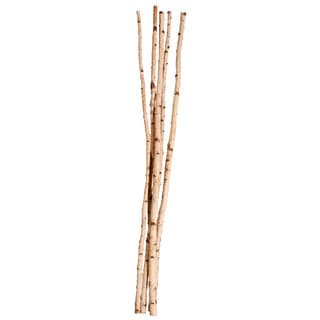 Vickerman White Birch 72-inch 5-piece Pole Set