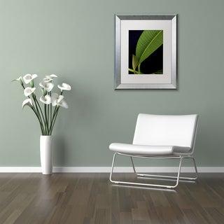 Kurt Shaffer 'Plumeria Leaf Abstract' Matted Framed Art