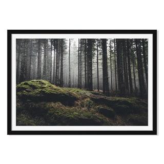 Andreiuc88 'Wilderness Landscape Forest 'Framed Paper