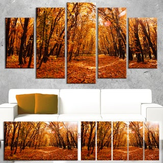 Yellow Falling Leaves in Forest - Landscape Photo Canvas Art Print