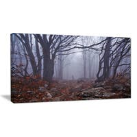 Dark Foggy Forest in Autumn - Landscape Photo Canvas Print - Blue