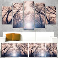 Mysterious Sunlight in Forest - Landscape Photo Canvas Art Print - Blue