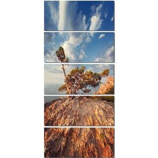 Sunrise with Old Tree at Peak - Landscape Photo Canvas Art Print