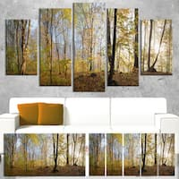 Green Autumn Forest in Morning - Landscape Photo Canvas Print