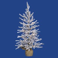 Vickerman Flocked White-on-Green PVC 36-inch Frosted Angel Pine Artificial Christmas Tree with 50 Warm White LED Lights