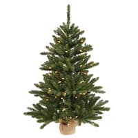 Vickerman Green Plastic 30-inch Anoka Pine Artificial Christmas Tree with 50 Clear Lights