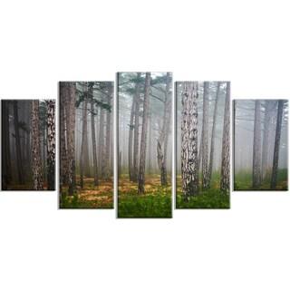 Dense Misty Forest - Landscape Photography Canvas Print
