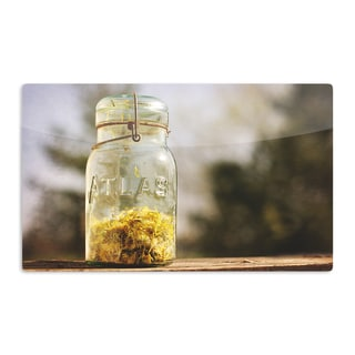 KESS InHouse Angie Turner 'Jar of Sunshine' Country Artistic Aluminum Magnet