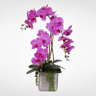 Real Touch Lavender Phalaenopsis Orchid with Succulents in Ceramic Pot