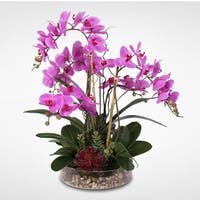 Real Touch Purple Phalaenopsis Orchid with Succulents and Natural Rocks in Glass Pot