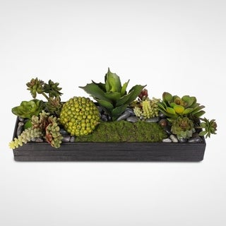 Succulent Arrangement With Natural Rocks in Wood Planter