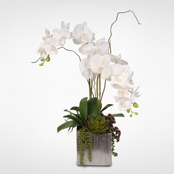 Real Touch White Phalaenopsis Orchids with Succulents in Silver Ceramic Pot. Opens flyout.