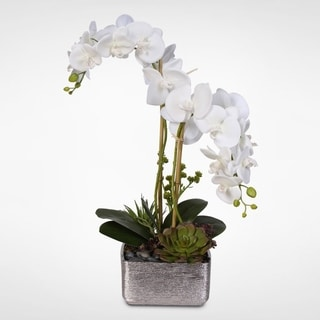 Real Touch White Phalaenopsis Orchid with Succulents in a Silver Ceramic Pot