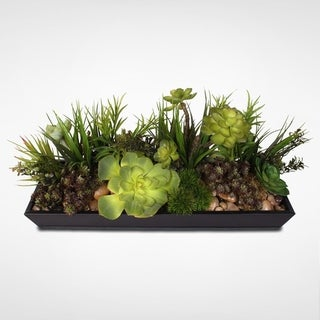 Metal Rectanglular Tray Succulent Arrangement with Natural Rocks