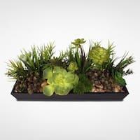 Metal Rectanglular Tray Succulent Arrangement with Natural Rocks