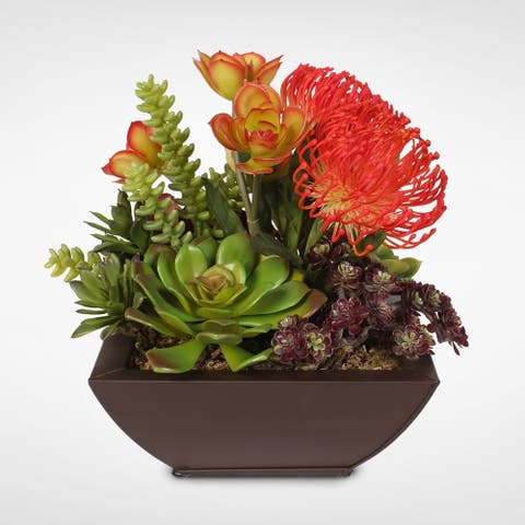 Contemporary Orange Tropical Succulent Arrangement in a Metal Container