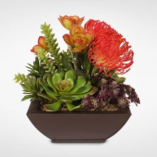 Contemporary Orange Tropical Succulent Arrangement in a Metal Container