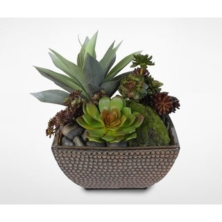 Succulent Arrangement with Decorative Rocks in Ceramic Pot