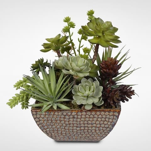 Ceramic Pot Succulent Centerpiece