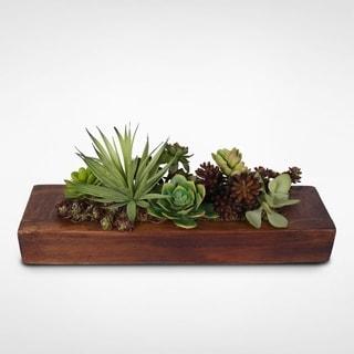 Succulent Garden in Wooden Rectangle Container