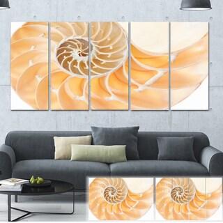 Light Brown Nautilus Shell - Abstract  Art Canvas Print