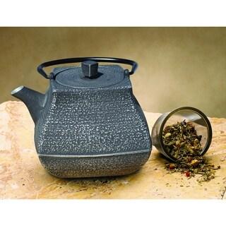 Meiyo Silver and Black Cast Iron Teapot 44 ounce